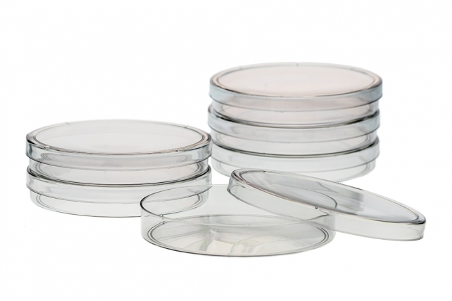 Disposable Petri Dish